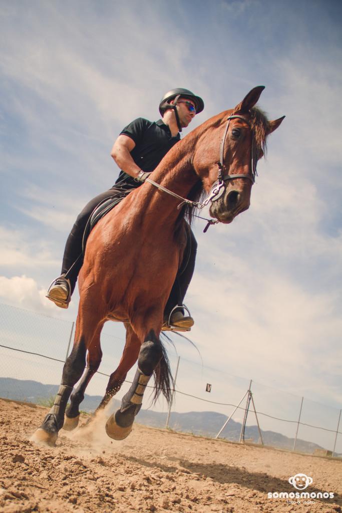 Assaig del Cavall (12)