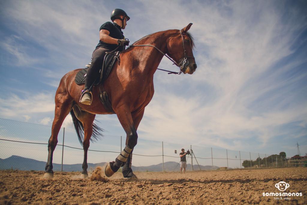Assaig del Cavall (16)