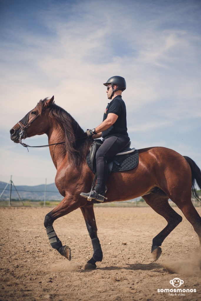 Assaig del Cavall (72)