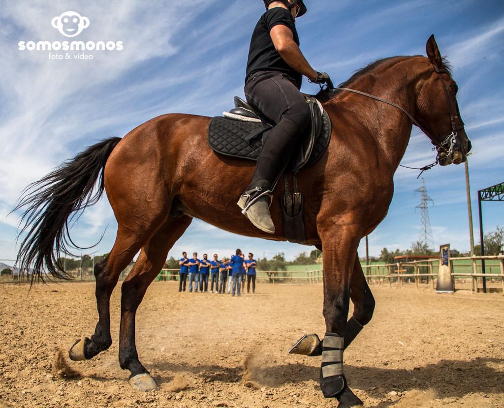Assaig del Cavall (97)b